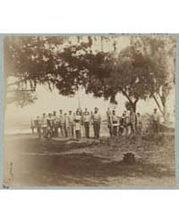 Confederate Artillery Near Charleston, P... by Cook, George S.