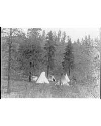 A Hill Camp by Curtis, Edward S.
