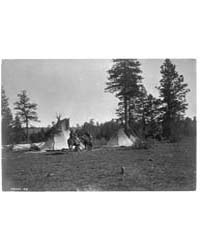 Camp of the Root Diggers--yakima by Curtis, Edward S.