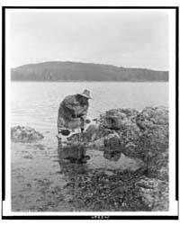 Gathering Abalones--nakoaktok by Curtis, Edward S.