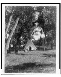 Camp in the Cottonwoods--cheyenne by Curtis, Edward S.