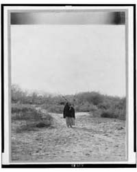 Pima Woman, with Burden Basket on Back, ... by Curtis, Edward S.