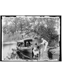 On the Tomoka, Photograph 4A03544V by Jackson, William Henry