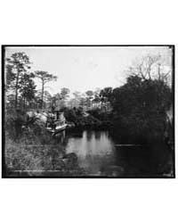 Sebastian Creek, Photograph 4A03566V by Jackson, William Henry
