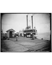 St. Lucie at Eden, Indian River, Photogr... by Jackson, William Henry