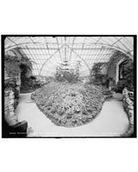 Conservatory on Belle Isle Park, Interio... by Library of Congress