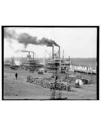 The Levee, Vicksburg, Miss., Photograph ... by Library of Congress
