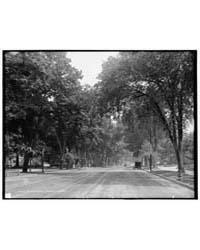 State Street, Springfield, Mass., Photog... by Library of Congress