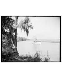 Magnolia-on-the-ashley I.E. Magnolia Gar... by Library of Congress