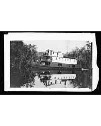 On the Ocklawaha , Florida, Photograph 4... by Jackson, William, Henry