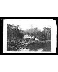 The Okeehumkee on the Ocklawaha , Photog... by Jackson, William, Henry
