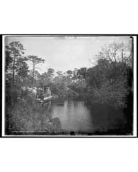 Sebastian Creek, Photograph 4A28786V by Jackson, William, Henry