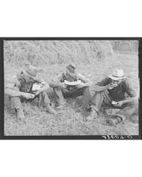 Hired Hands Eating Watermelon Kimberley ... by Library of Congress