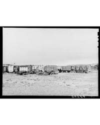 Circus Wagons Made by Mr Whitmarsh Alger... by Library of Congress