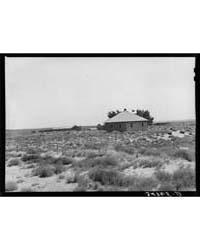 Abandoned Farm Syracuse, Kansas, Photogr... by Library of Congress
