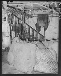 Sacks of Feathers and Bloody Overalls at... by Library of Congress