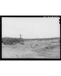 Stock Water Storage Tank and Windmill on... by Library of Congress