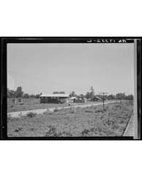 Approach to the Delta Cooperative Farm f... by Library of Congress