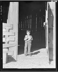 George Dimotakis at Barn on His Family F... by Library of Congress