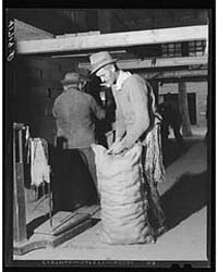 Sewing up Sacks of Potatoes for Shipment... by Library of Congress