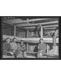 Sleeping Quarters Provided for Pickers W... by Library of Congress