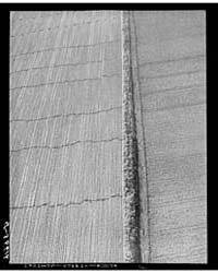 Potato Field After the Crop Was Gathered... by Library of Congress