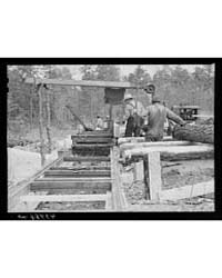 Sawmill in Heard County, Georgia, Photog... by Library of Congress