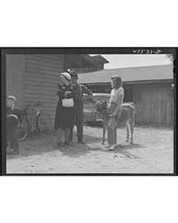 Waiting for the Cattle Judging at the Ru... by Library of Congress