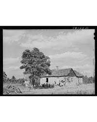 House on the Road Near Woodville, Greene... by Library of Congress