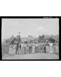 Yabucoa, Puerto Rico Sugar Strikers Pick... by Library of Congress