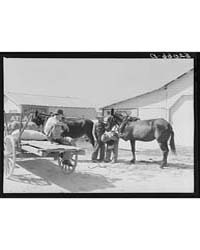 Combination Filling Station, Garage, Bla... by Library of Congress