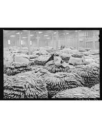 Baskets of Tobacco on Warehouse Floor Be... by Library of Congress