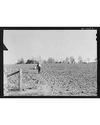 Spring Planting, Shenandoah Valley, Virg... by Library of Congress