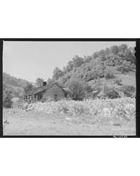 Mountaineer's Cabin with Tobacco Patch u... by Library of Congress