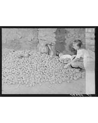 Josh Calahan's Little Girl Getting Some ... by Library of Congress