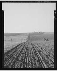 Planting Corn with Two-row Horse Planter... by Library of Congress