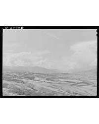 Wheat Lands Idaho County, Idaho, Photogr... by Library of Congress