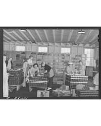 Packing Canned Salmon Into Cases Columbi... by Library of Congress