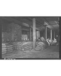 Petaluma, Sonoma County, California Feed... by Library of Congress