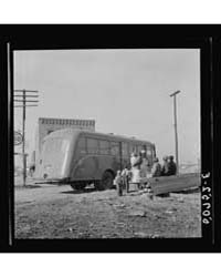 Untitled : Photograph 8C30042V, 1935 by Library of Congress