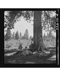 Klamath Falls, Oregon Picnickers at City... by Library of Congress
