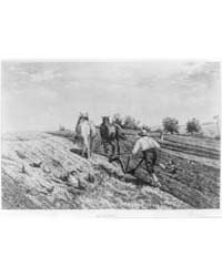 The Ploughman, Photographs 3A36478R by Moran, Peter