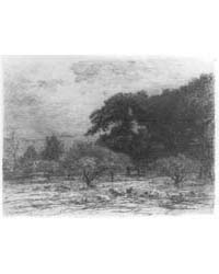 Landscape with Sheep in an Orchard, Phot... by Cole, Joseph Foxcroft
