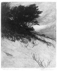 Twilight on the Dunes, Photographs 3B237... by Reed, Earl Howell