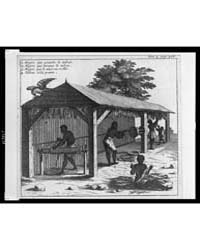 Four People Working with Harvested Tobac... by Library of Congress