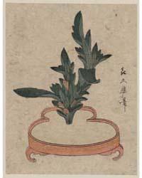 Haran Rikkazu by Kitagawa, Tsukimaro