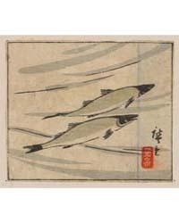 Ayu Zu, Photograph 00492V by Utagawa, Hiroshige