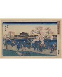 Sumida Tsutsumi Hanami No Zu, Photograph... by Andō, Hiroshige