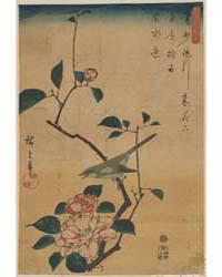 Tsubaki Ni Uguisu, Photograph 00508V by Andō, Hiroshige