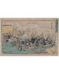 Kameido Umeyashiki No Zu, Photograph 022... by Andō, Hiroshige